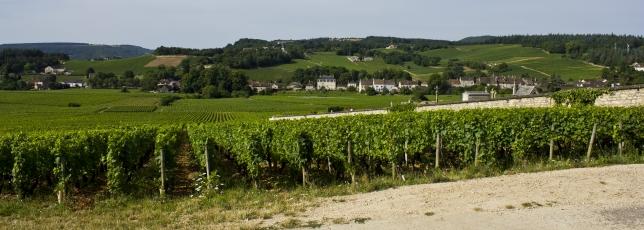 Coteaux de Mercurey (2)