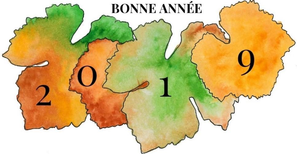 Carte de voeux 2019 du Domaine Michel Juillot représentant des feuilles de vignes